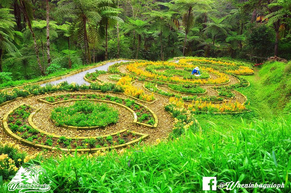 Mount Costa Baguio